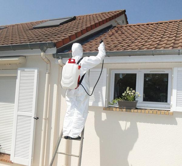 dorsal-sprayer-nettoyage-toiture-600x550